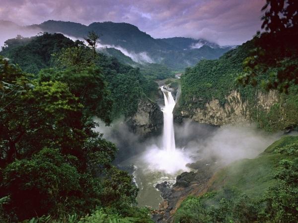 Amazon prales